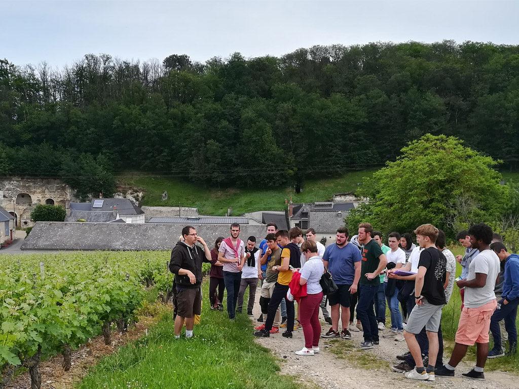 Les BTS viticulture-oenologie dans les vignes du domaine PARIS à Chançay
